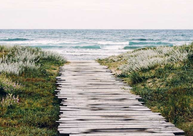 pathway-beach