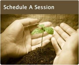 Session-plant