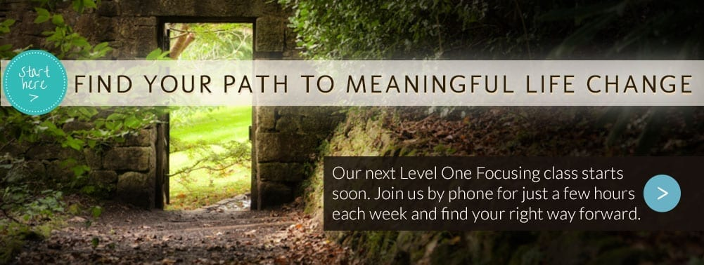 Get started Focusing with our Level One Course